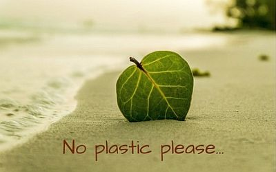 No Plastic – Thank you!